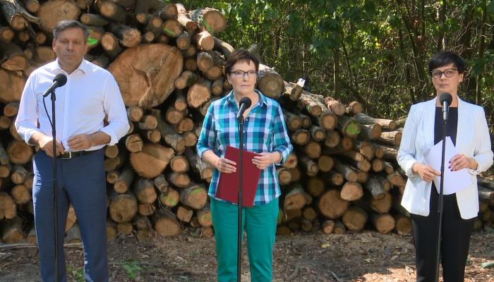 Premier zapowiada nowelizację ustawy o Lasach Państwowych fot. ŚWIECZAK