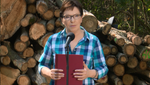 Premier Ewa Kopacz Premier zapowiada nowelizację ustawy o Lasach Państwowych fot. ŚWIECZAK