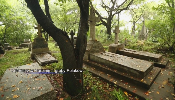 Cmentarz w Harbinie – groby Polaków Miasto lodu - Harbin