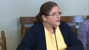 prof. Krystyna Pawłowicz Prezes TK podsumował działalność Trybunału Konstytucyjnego w 2015 r. fot. ŚWIECZAK